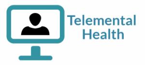 Network TeleMental Health 2.0 Training Program
